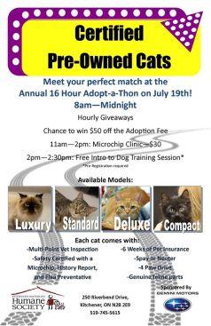 16 hour adoptaton