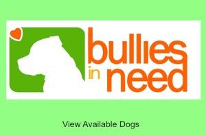 Bullies in Need Adoption