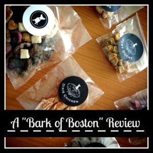 Bark of Boston