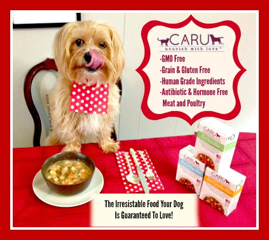 Caru, CARU Pet Food, Give a Dog a Bone