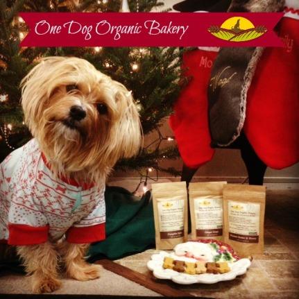 One Dog Organic Bakery Review, Organic Dog Treats
