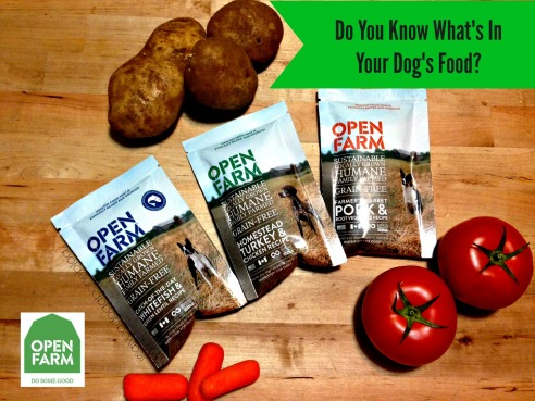 Certified Humane, Organic Dog Food, Grain Free Dog Food, Give a Dog a Bone, Dog Blog, Dog Food,