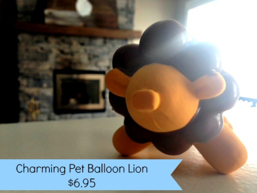 Charming Pet Balloon, Paws and Play, Paws and Play box,