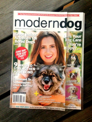 Modern Dog Magazine, Subscription Bow Review, Paws and Play