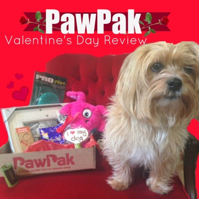 PawPak Review, Subscription Box for Dogs