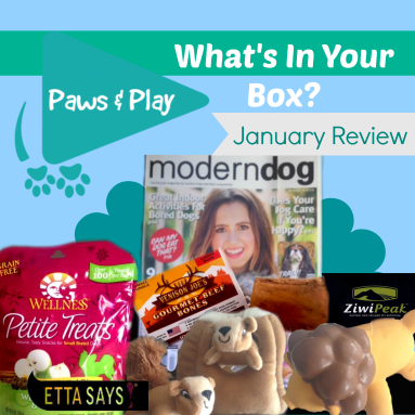 Paws and Play, Subscription Box for dogs, Canadian Subscription Box, Paws and Play Review