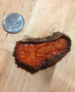 sweet potato sample2