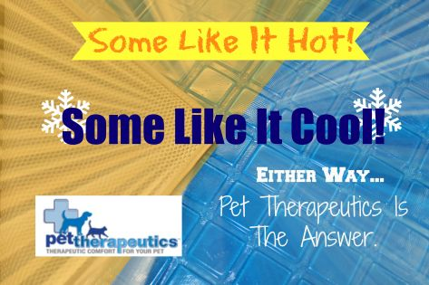 Pet Therapeutics, Cool Beds For Dogs, Gel Beds