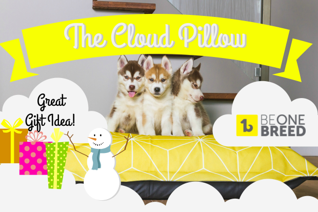 Final Cloud Pillow Header.png