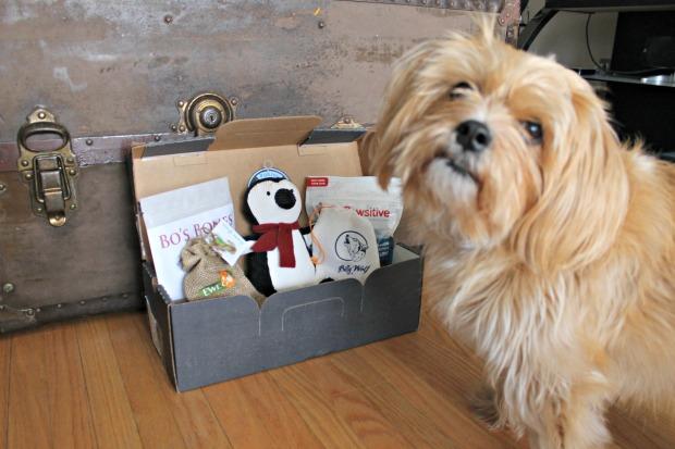 Give a Dog a Bone, Dog Blog, Pet blog, Pupjoy review