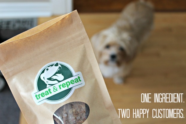 treat and repeat, give a dog a bone blog, dog blogger, pet lifestyle expert, pet nutrition blogger