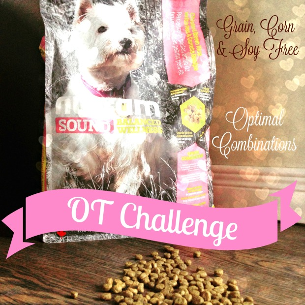 Nutram, NutramOTC, Optimum Transition Challenge, Canadian Pet Food, Pet Nutrition Blogger, Give a dog a bone blog